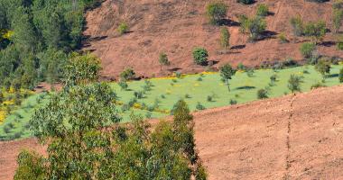 Faixa verde atravessa a terra
