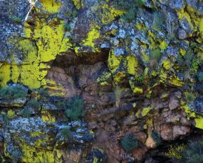 Rochas pintadas de amarelo