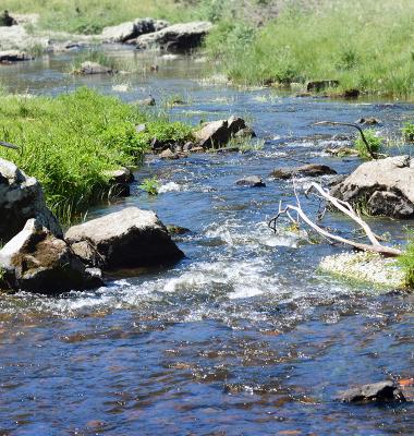 Rio Caia entre Mosteiros e Assumar