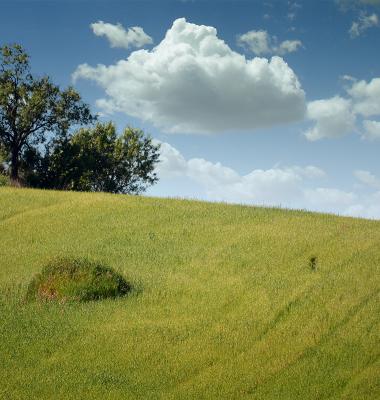 Uma colina perto de Campo Maior