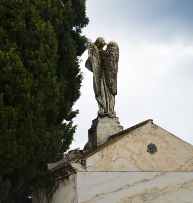 Cemitério de Aldeia da Mata