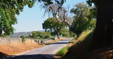 Estrada perto de Stº António das Areias