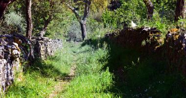 Caminho perdido entre Portugal e Espanha