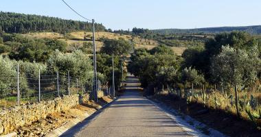 Estrada de Albarrol