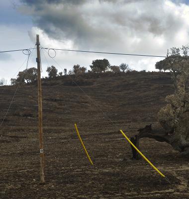 Pirâmide linear com azinheira quebrada e queimada