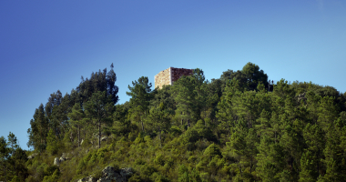 Torre num ermo junto ao Tejo