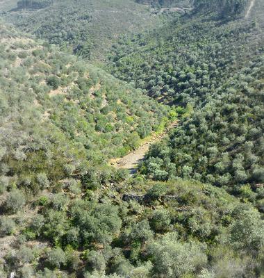 Estrada num vale entre Velada e Arneiro