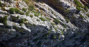 Luz e sombra sobre rocha manchada de verde