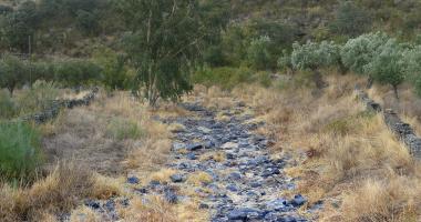 Leito de um rio morto no Verão