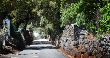 Caminho entre Vargem e Alagoa