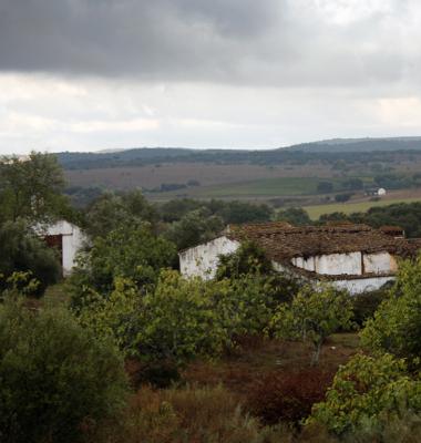 Monte entre Stº Amaro e Sousel