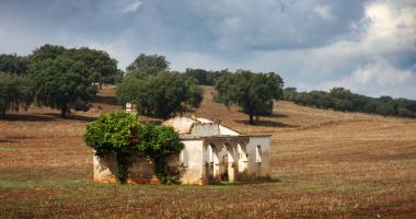 Monte em ruínas entre Stº Amaro e Sousel