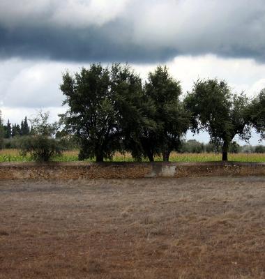 Murete divisório à chegada ao Cano